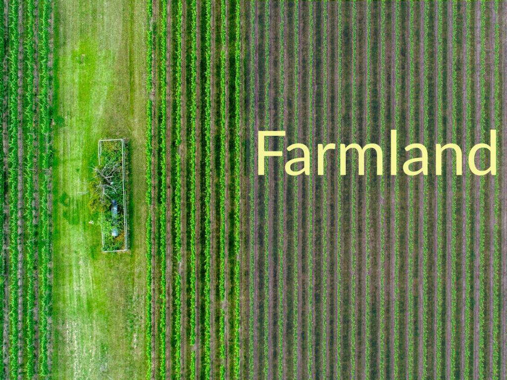 "Green farm field from above. Caption says ""farmland."""