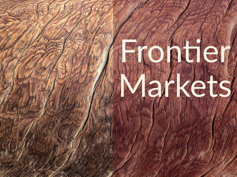 347: Should You Invest in Frontier Markets?